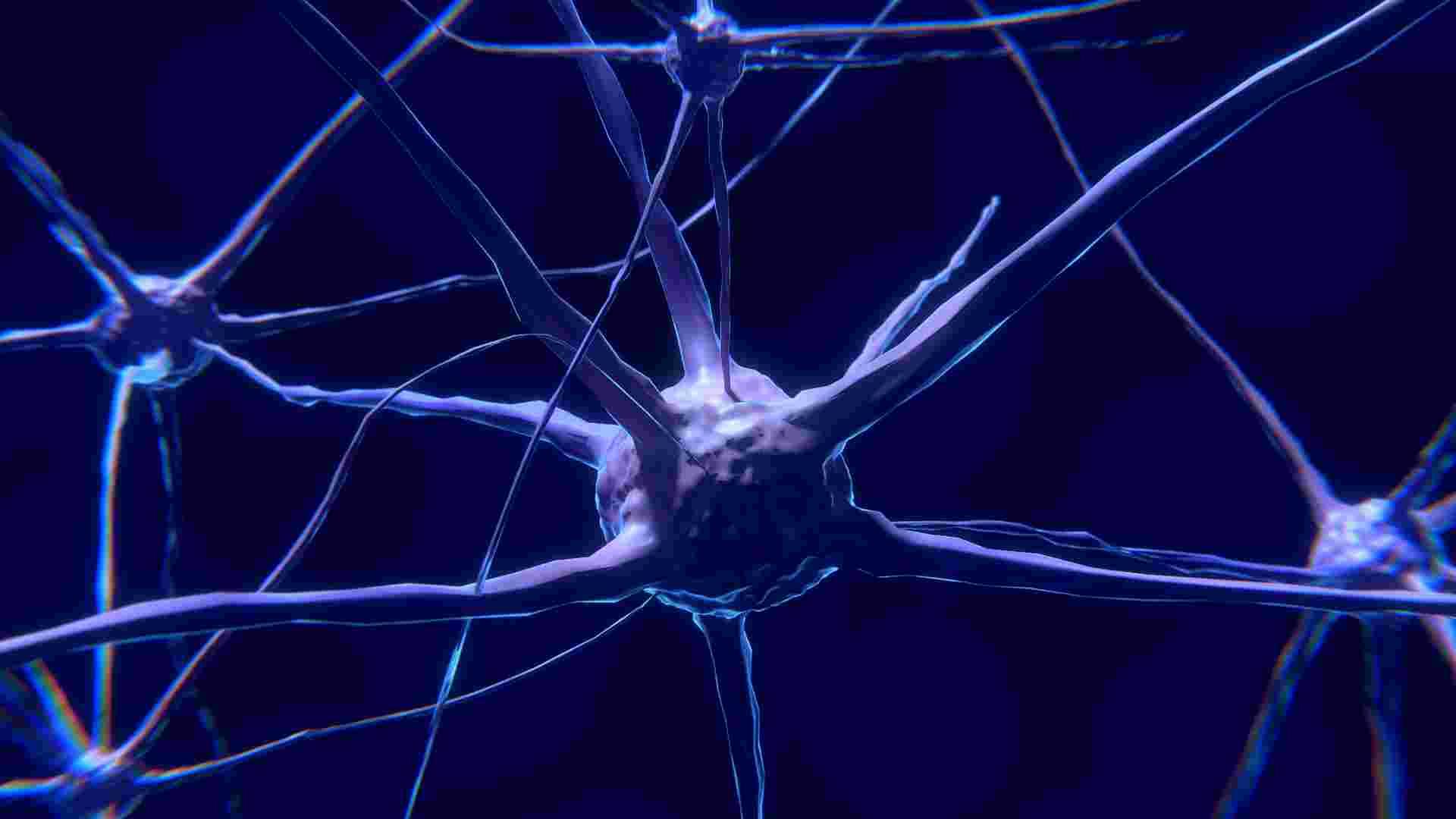 Was Yoga mit unserem Gehirn macht